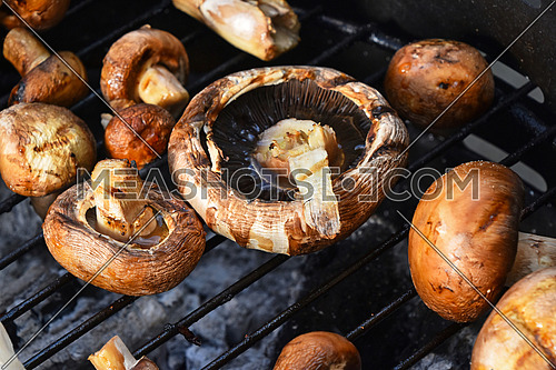 Brown champignons portobello mushrooms being cooked on char grill