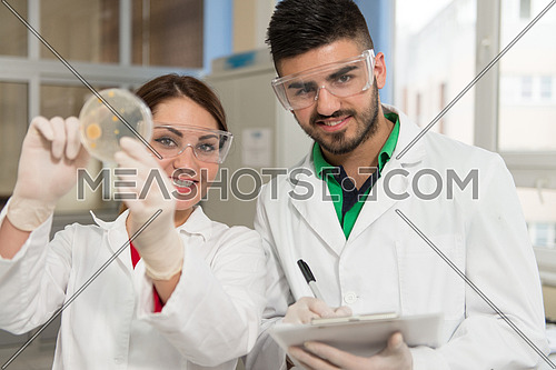 Interracial Team Of Male And Female Medical Or Scientific Researchers Or Doctors In A Laboratory