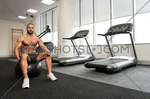 Portrait Of A Muscular Man Resting On Pilates Ball In Fitness Gym
