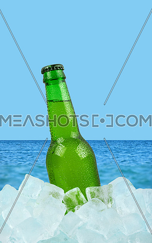 Close up one green glass bottle of cold lager beer on ice cubes over background of summer sea and sky, low angle side view