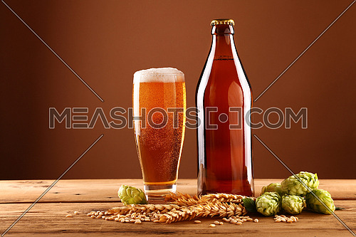 Close up one full brown bottle and glass of beer with froth and bubbles, green hops, barley grain and spikes on wooden table, low angle side view