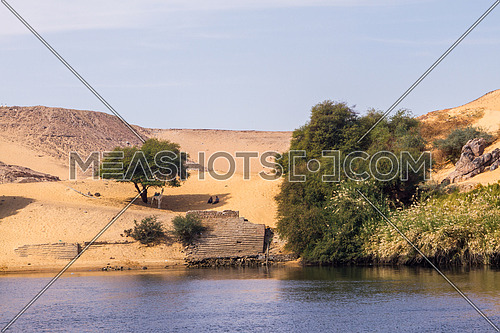 Nile river bank, Aswan Egypt