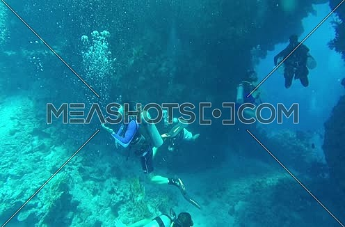 Long  shot for scuba divers and hard coral colony underwater at The Red Sea
