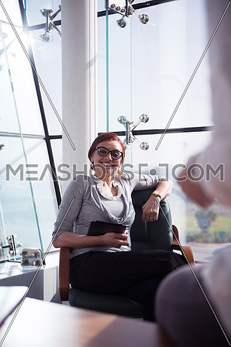 young female executive having a meeting in a bright modern office
