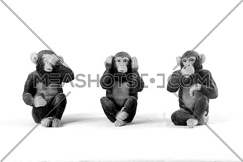 Monkeys no hear, no see, no talk concept