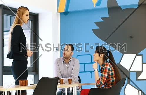 business people meeting in startup company