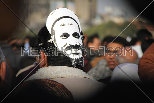 A man from his back wearing sheikh emad effat mask in a protest