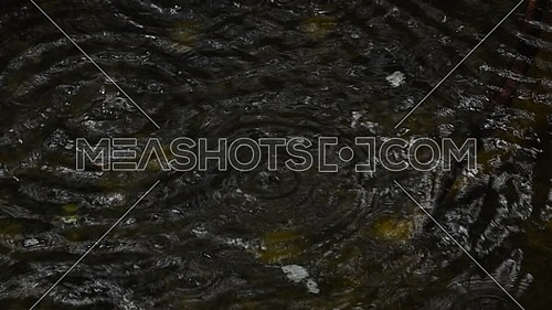 Close up drops falling on dark water surface and making ripples, high angle view