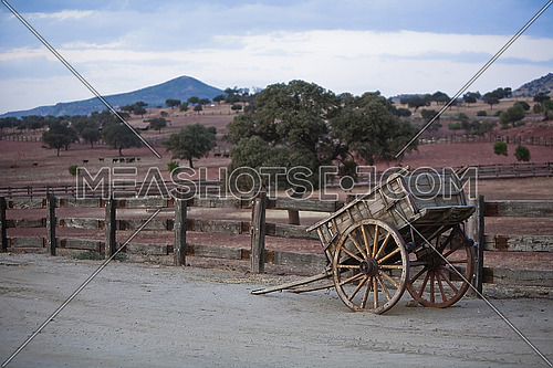 Carriage of wood, rural landscape, Spain