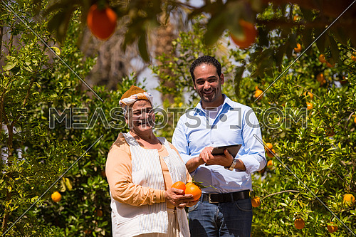 portrait of an elderly middle eastern farmers and young man on a farm of orange with a smile on their faces a sunny summer day