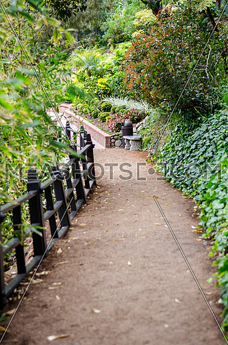 a passage way among a garden with trees, plants and flowers and a wooden fence