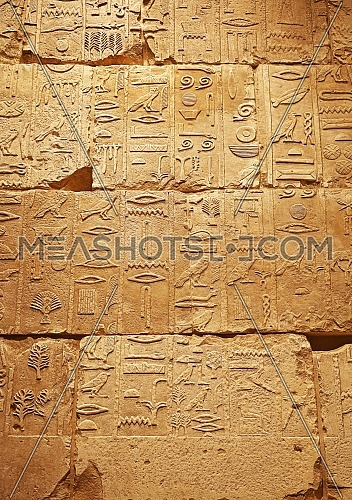 Close up background of antique stone wall with carved ancient Egyptian hieroglyphs, front view