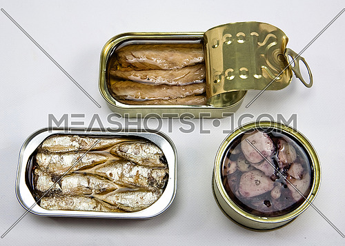 Tins of different sizes and opening, mackerel in vegetable oil, sardines and Octopus