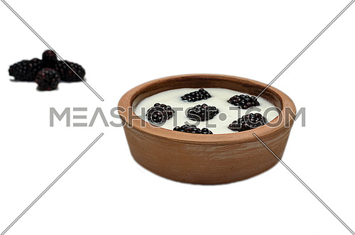 Pottery bowel full of yogurt and blackberry fruits