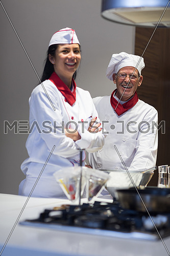 portrait of an elderly middle east chefs and young cooks in the kitchen