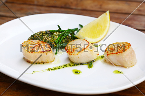 Close up portion of three grilled scallops on white plate over brown wooden table, high angle view