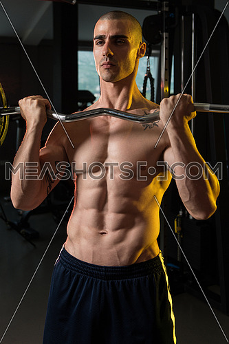 Young Athlete In The Gym Performing Biceps Curls With A Barbell