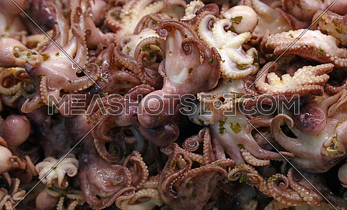 Marinated pickled octopus seafood salad with green herbs in brine close up, high angle view