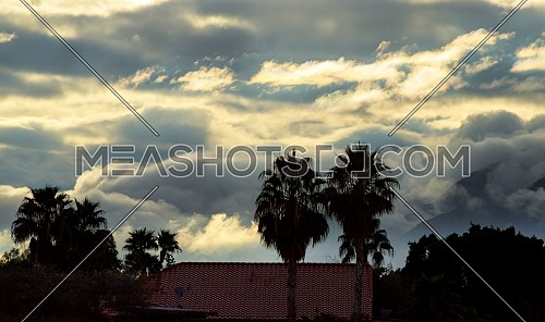 Foggy covered mountains landscape and blue sky view with tree silhouette palm Arizona, USA