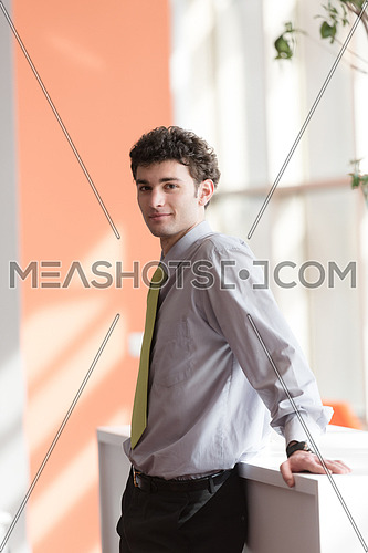 portrait of successful young business man at modern office  interior with big windows in background