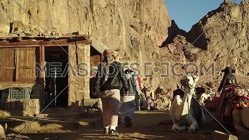 Bedouin male waking through camels rest area in Sinai Mountain at day.