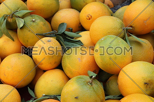 photo for orange fruit for sale in the market in an Egyptian village
