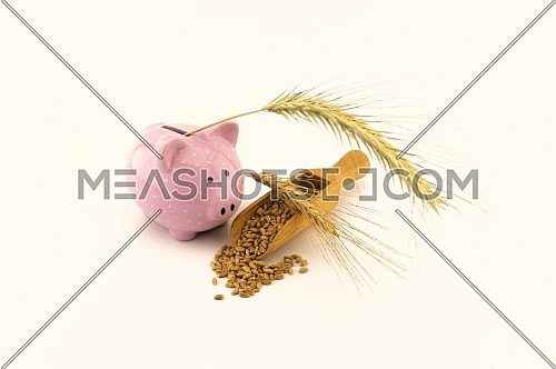 Pink piggy bank and fresh seeds spilling from a wooden scoop onto a white background with golden ears, conceptual grain price still life