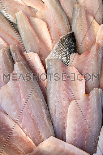 Sea bass fillet at seafood market,healthy life concept, diet.
