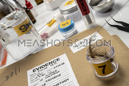 Criminalistic Laboratory, hair analysis, conceptual image