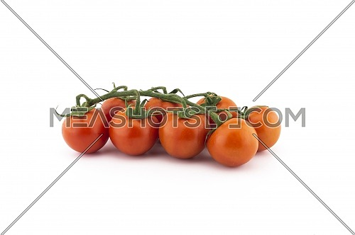 Fresh cherry tomato twig isolated on white background