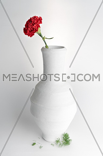 Still life composition of white pottery vase and red flower on white background
