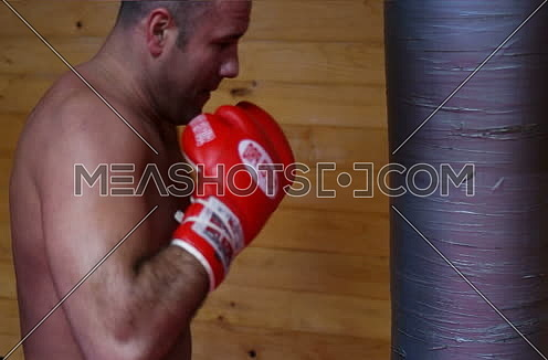 strong boxer training for fight