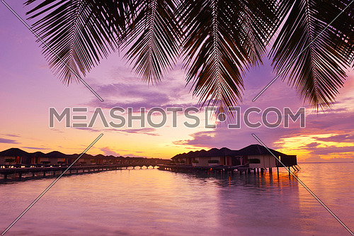tropical beach with white sand at summer