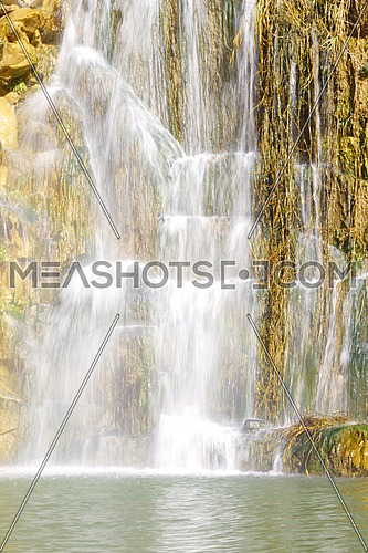 water falls in jordan , showing the water and river and sea plants