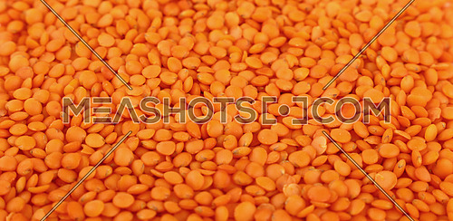 Orange Masoor Dal (Red Chief) lentil lens close up pattern background, high angle view, selective focus