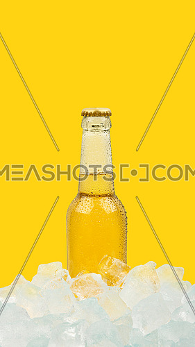 Close up one clear glass bottle of cold lager beer on ice cubes at retail display isolated on yellow background, low angle side view