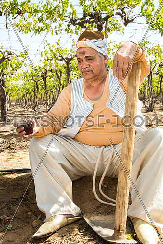 an egyptian farmer taking a break and drinking tea in the farm