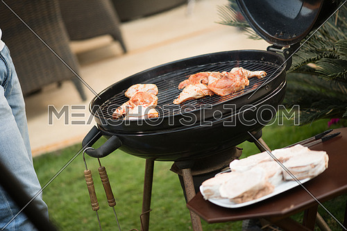 tasty chicken on the grill