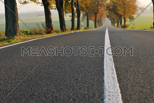 country road at autumn season with bright orange colors at morning sunrise