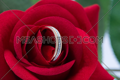 ring with diamond in red flower