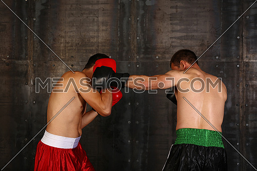 Close up side portrait of two men boxers in boxing gloves during fight action, low angle view