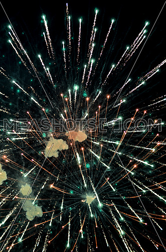 fireworks fired at a holiday night