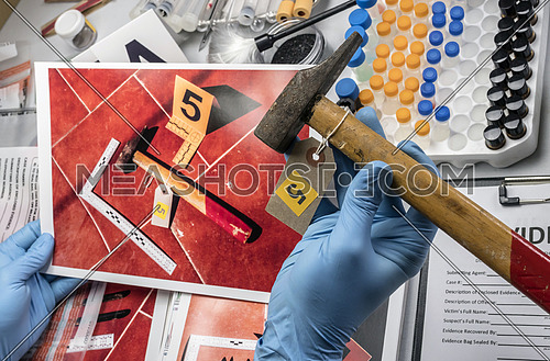 Police scientist analyses hammer from crime scene at laboratory criminologist