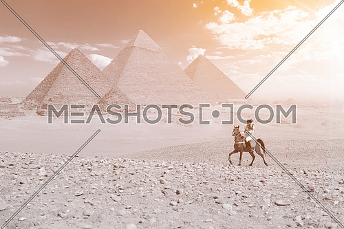 a desaturated shot of young  Egyptian man riding arabian horse in desert,  giza plateu with great pyramids in background