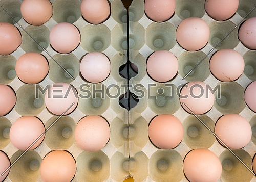 Brown chicken eggs placed in cardboard boxes at the market,view from above,outdoor.
