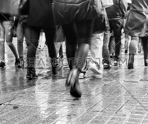 many legs walking during the rain on a wet pavement