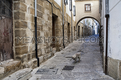 Typical Street of the world heritage city in Baeza, Street Barbacana next to the clock tower, It is characterized by the union of two houses with a passage, Baeza, Jaen province, Andalucia, Spain