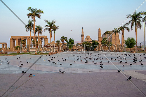 Long shot for a Temple, mosque and pigeons yard in Luxor at day