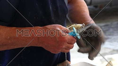 Man selling and opening fresh oysters with knife wearing protective metal gloves, at fishermen seafood market close up, personal perspective