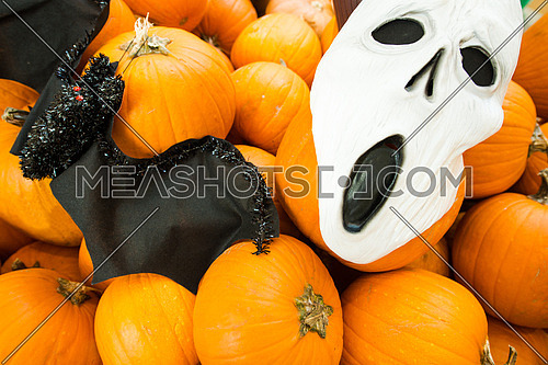 A pumpkin and scary mask and bat in a halloween set up